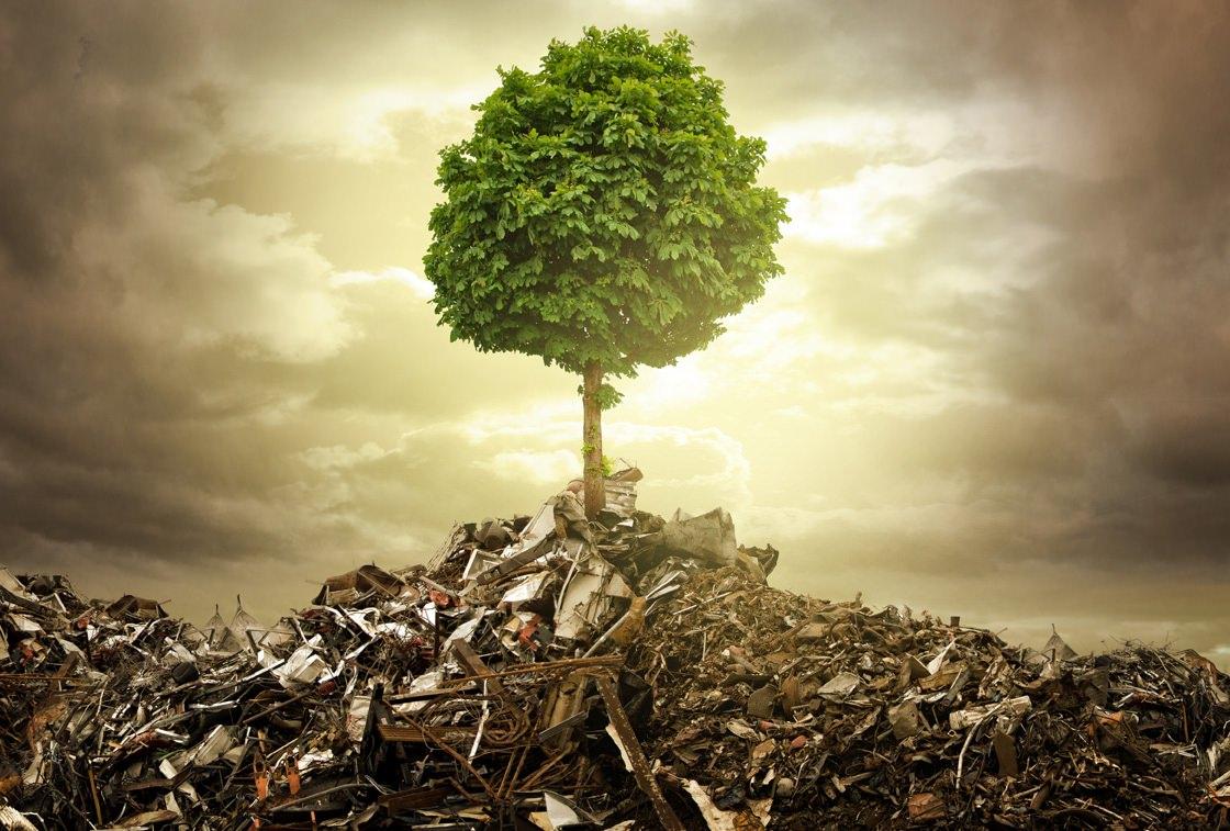 Sottocategoria 2-ter iscrizione Albo Gestori Ambientali