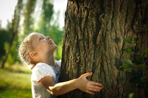 Potatura o abbattimento degli alberi nel condominio