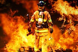 Reato di incendio boschivo