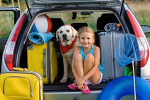 Animali in auto con noi