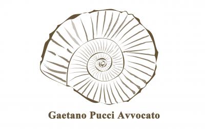AVV. GAETANO PUCCI