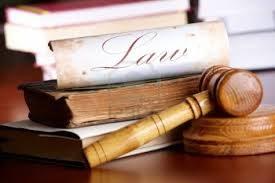 Avv. Botti Agnese- diritto tributario, famiglia e responsabilità civile