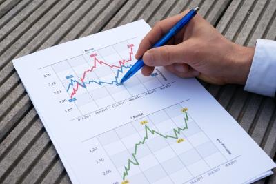 Il controllo di gestione nell'impresa (PMI)