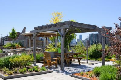 La corretta progettazione agronomica del giardino