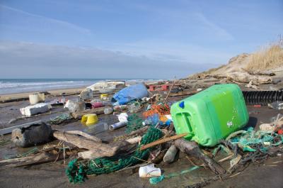 I reati ambientali