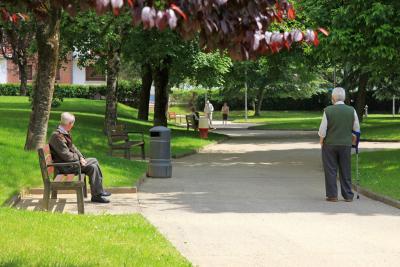 Pensione di reversibilità tra coniuge divorziato e superstite