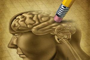 Cervello e investimenti...