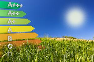 Investimenti sostenibili, un nuovo approccio nella costruzione dei portafogli